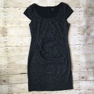 ANN TAYLOR Black Leopard Print Cap Sleeve Dress